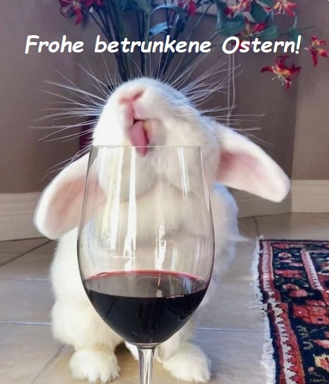 Bílý králík olizující vinnou sklenici s červeným vínem s nápisem Frohe betrunkene Ostern!