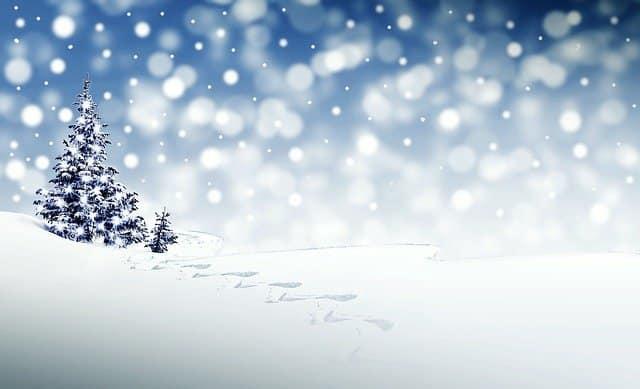 Vánoční přáníčko se zasněženým stromem.