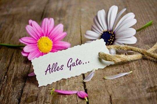 Růžová a bílá kopretina na dřevěné podlaze s kartičkou s nápisem Alles Gute...