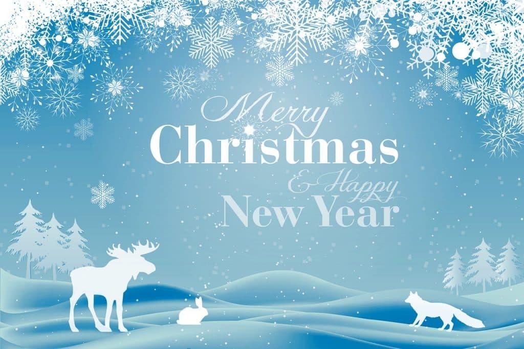 Pohled s vánočním a novoročním přáníčkem.