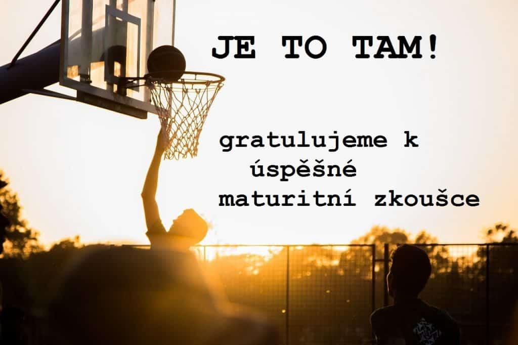 Úspěšný koš při basketbalu.