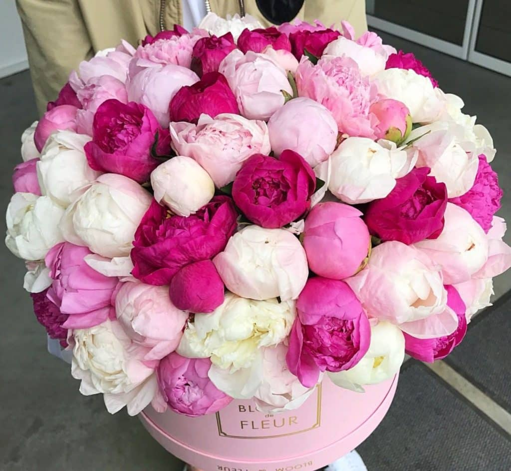 Růžové kytky v růžové dárkové krabici.