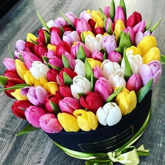 Barevné tulipány v dárkové krabici.