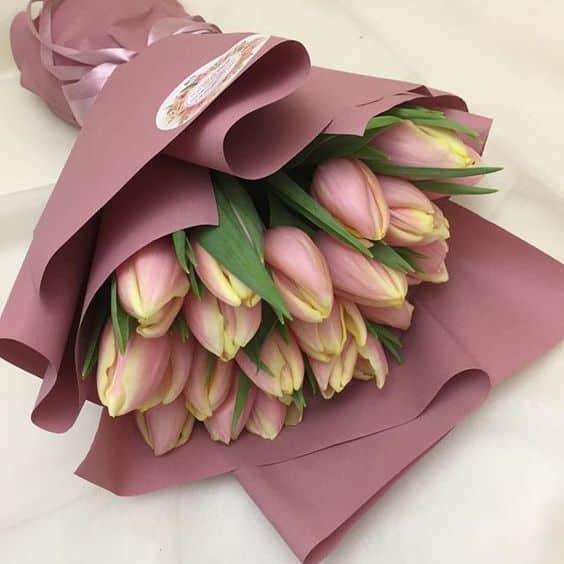 Kytice růžových tulipánů k svátku.