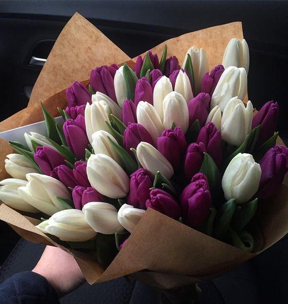 Bílé a fialové tulipány v dárkové kytici.
