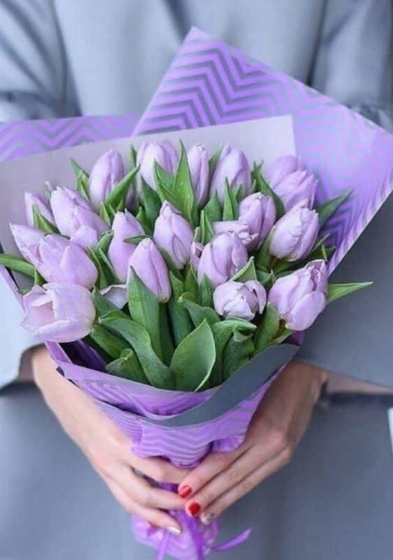 Dárková kytice fialových tulipánů.