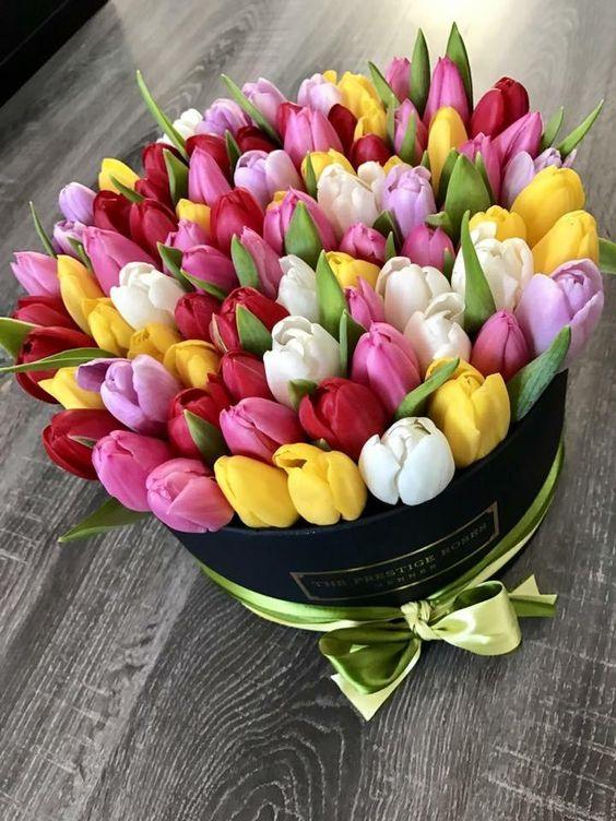 Barevné tulipány k svátku v dárkové krabici.