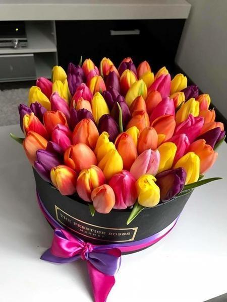 Dárková kytice tulipánů k svátku v černé krabici.
