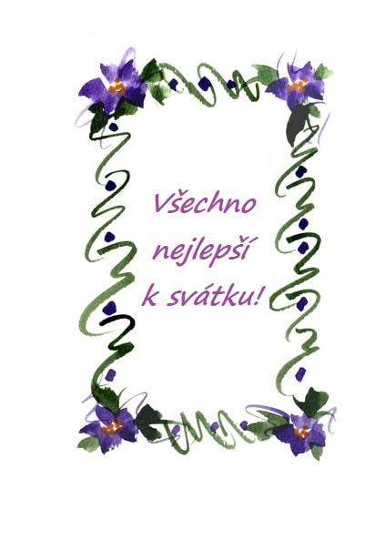 Přání k svátku pro ženy orámované fialovými květy.