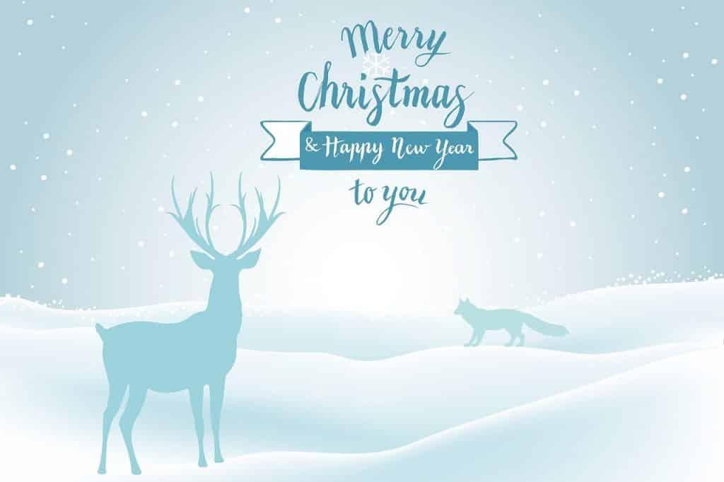 Veselé Vánoce a šťastný nový rok - MMS přáníčko s obrázkem.