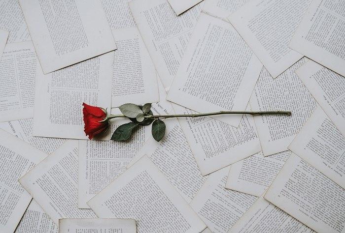 Růže, ležící na verších k narozeninám, které jsou vytisknuty na vytržených stránkách.
